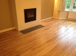 Floor sanding refinishing, dust free Salisbury